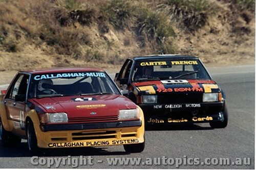 82002 - B. Callaghan / R. Muir - M. Carter / R. French Ford Falcon - Amaroo Park 1982