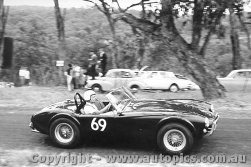 65101 - R. Thorp - AC Cobra - Australian Hill Climb Championships - Lakeland 1965