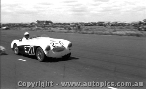 58419 - J. Roxburgh Austin Healey 100S -  Fishermen s Bend  22nd Feb. 1958