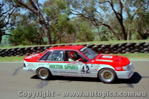 88755  - S.  Williams  / C. Clearihan Holden Commmodore VK  - Bathurst 1988   Slightly out of focus