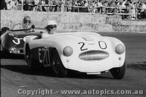 58441 - J. Roxburgh - Austin Healey - Fishermen s Bend - 22nd February 1958 - Photographer Peter D Abbs