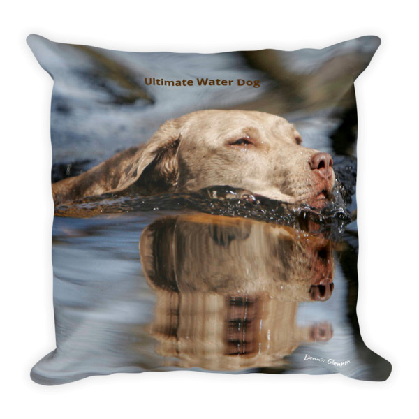 """Ultimate Water Dog"" Chesapeake Bay Retriever Decorative Pillow - Double Sided"