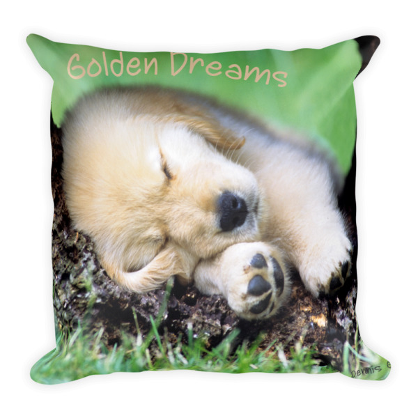 """Golden Dreams"" Golden Retriever Pups Decorative Pillow - Double Sided"