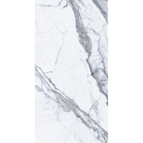 "Bianco Venantino Polished 24""x48"" Polished Porcelain Tile"