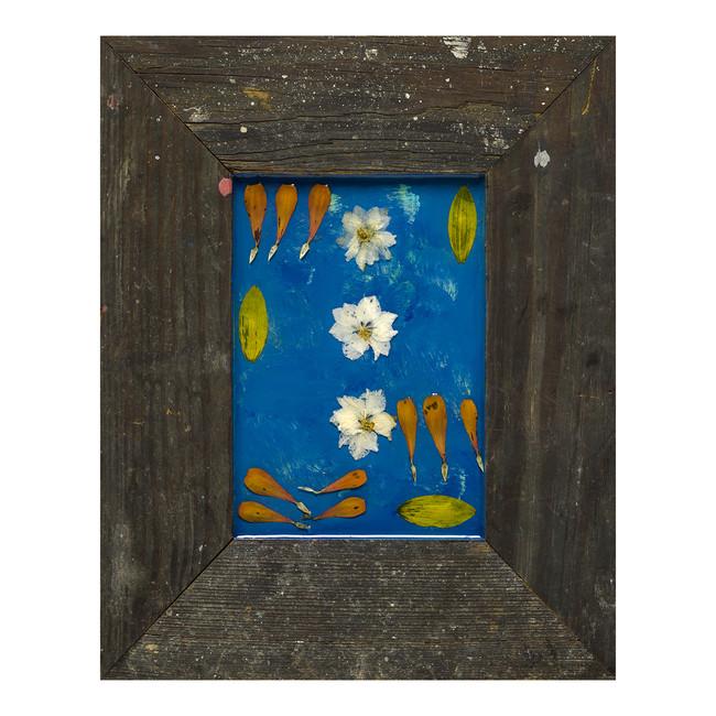 Lakespur Blue