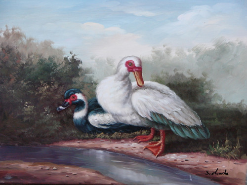 Beautiful small painting, stretched but without frame, by S. Charles.  A white duck stands next to a narrow  stream of water and black and white duck.
