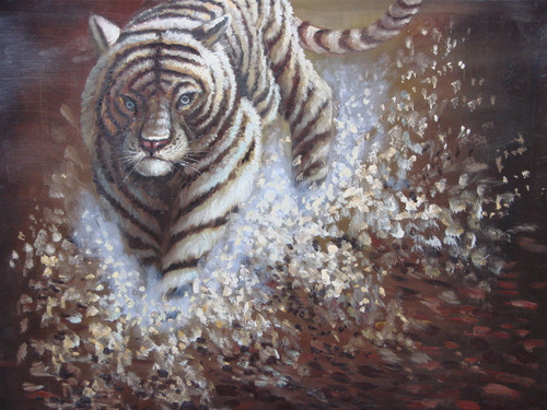 Beautiful painting, stretched but without frame, unsigned.  A white tiger runs through water creating a splash.