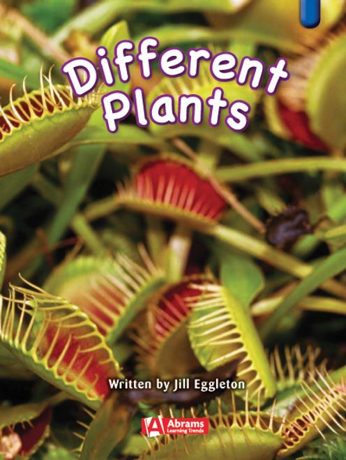 Key Links Literacy Blue Different Plants