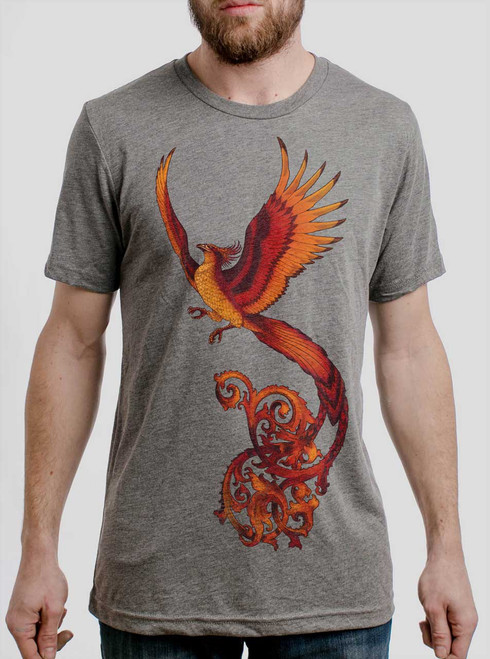 Phoenix - Multicolor on Heather Grey Triblend Mens T Shirt