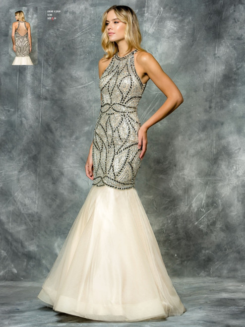 COLOR DRESS STYLE J040 SIZE 10 NUDE COLOR SPECIAL PRICE $389.00