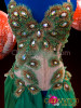 CHARISMATICO Diva Crystal Accented Forest Green Organza and Bronze Peacock Dress