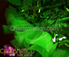 CHARISMATICO Asymmetrical Green Teardrop Sequined Ruffle Trim Latin Diva Dance Dress