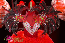 CHARISMATICO Red Beaded Feather Collar With Amber, Iridescent Crystal, and Ruby Accents