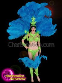 CHARISMATICO Blue and green samba Ostrich costume set for Rio Carnival