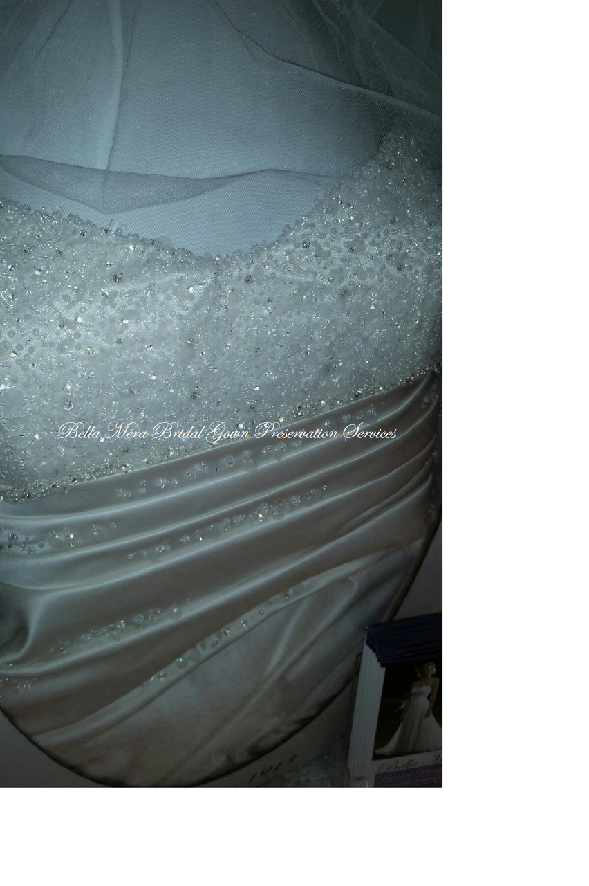 Traditional Wedding Gown Preservation Kits Online -Celebrity ...