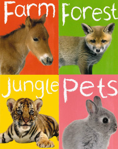 Baby Animals: My Mini Library Set of 4 (Board Book)