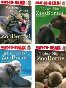 ZooBorns (Ready to Read) Level One: Set of 4 (Paperback)