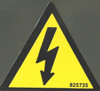 Safety Sign: International Electric Shock Icon