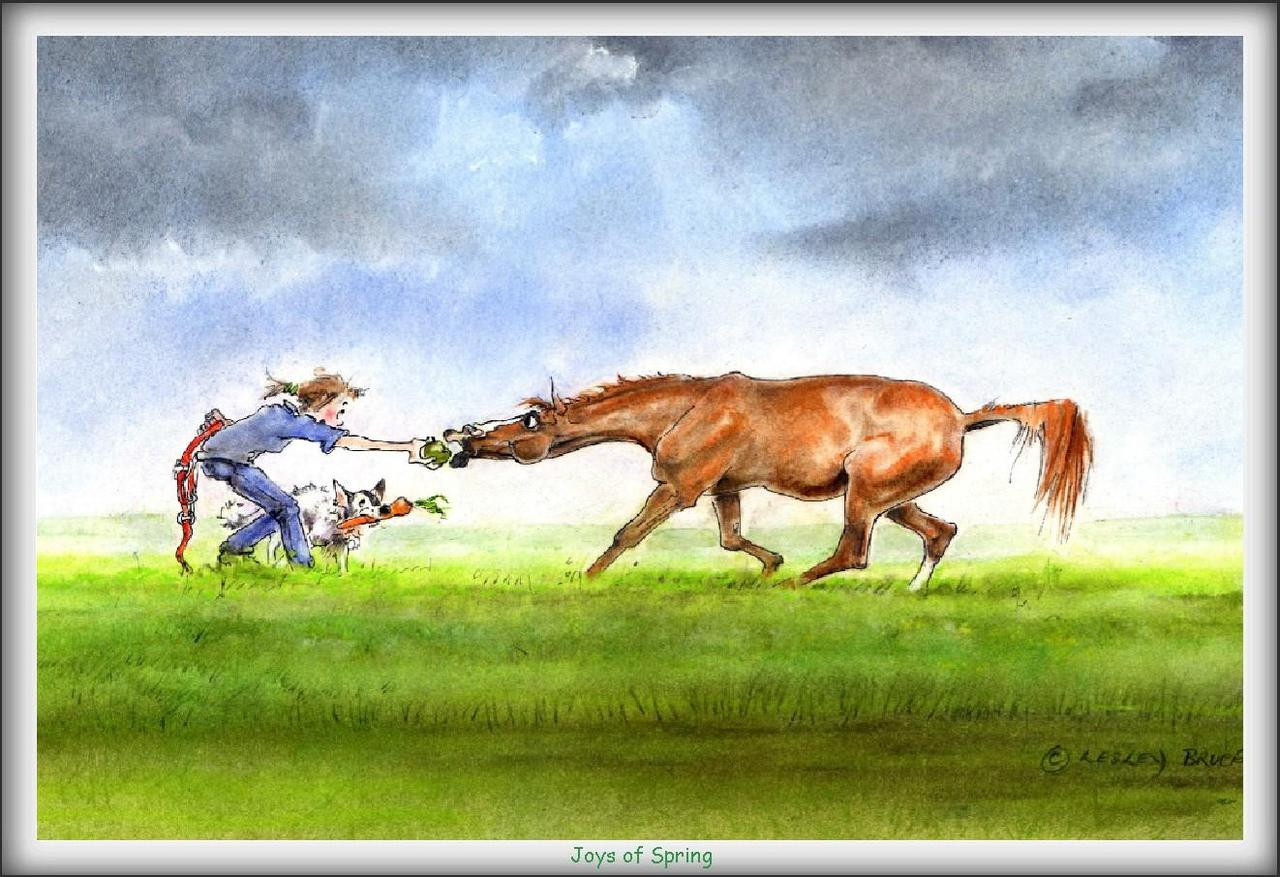 The joys of spring funny horse cards jude too lesley bruce horse card joys of spring jt04 bookmarktalkfo Images