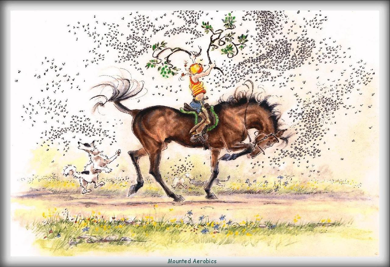 Mounted aerobics funny horse cards jude too lesley bruce horse card mounted aerobics jt05 bookmarktalkfo Images