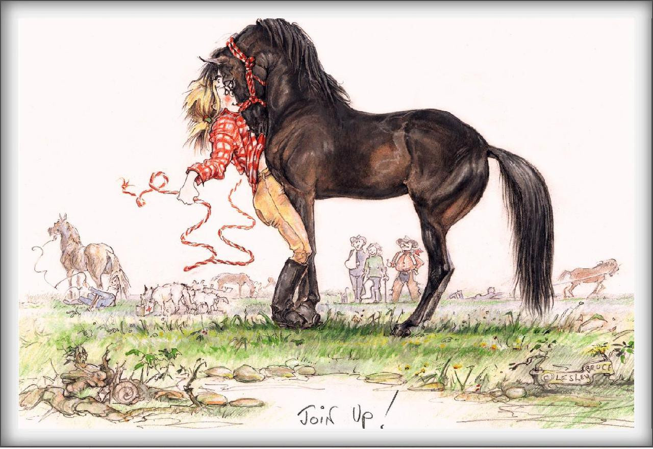Join up funny horse cards jude too lesley bruce bon vivant horse card join up jt29 bookmarktalkfo Image collections