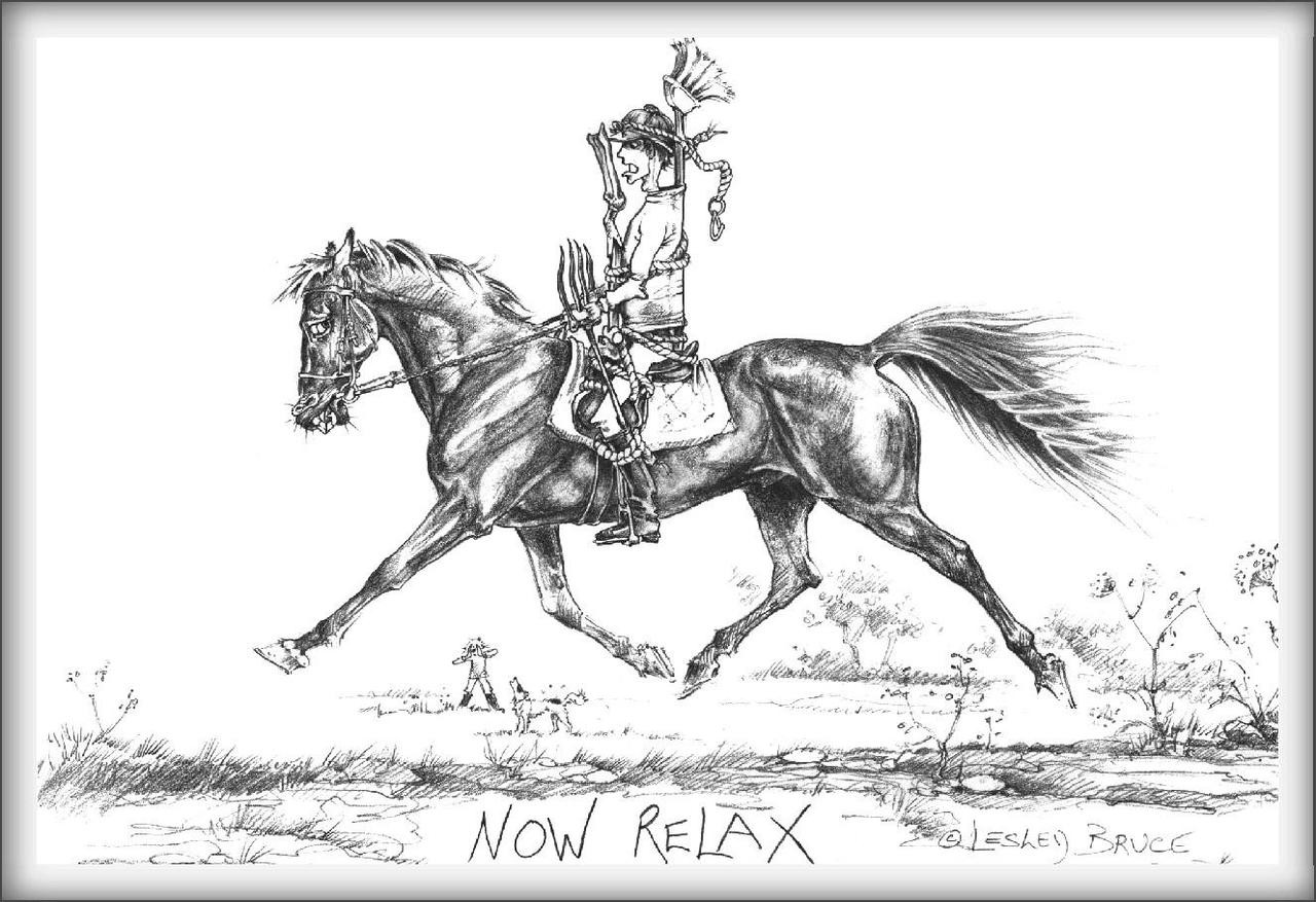 Now relax funny horse cards jude too lesley bruce bon vivant dressage greeting card now relax lb17 m4hsunfo