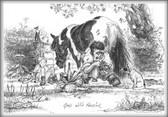 Farrier Horse Card:  Good with Farrier #LB34