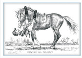 "Front View.  Funny Dressage Greeting Card.  ""Between Leg and Hand"""