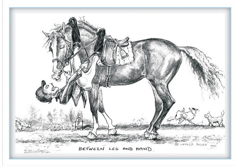 Between leg and hand funny dressage horse cards jude too between leg and hand funny dressage horse cards jude too lesley bruce front view sciox Choice Image