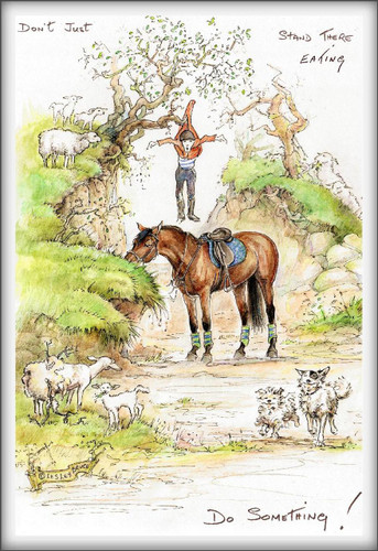 Dont Just Stand There Funny Horse Cards Jude Too Lesley Bruce