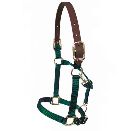 "Walsh 1"" Adjustable Breakaway Halter"