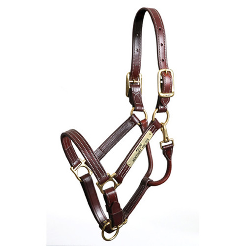 Walsh Kentucky Halter
