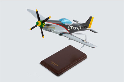 P-51D Mustang Gunfighter Airplane Model