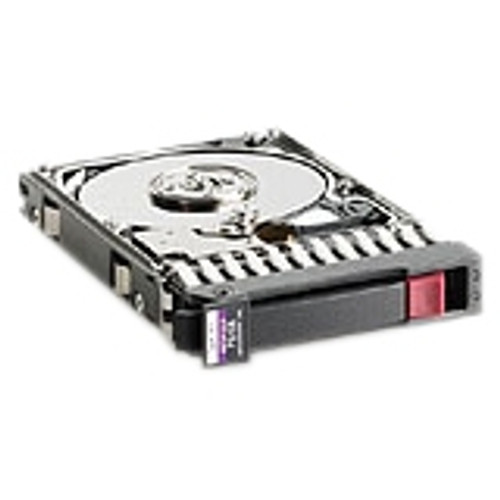 HP 300GB 15K DP 6G 2.5 SAS 627195-001