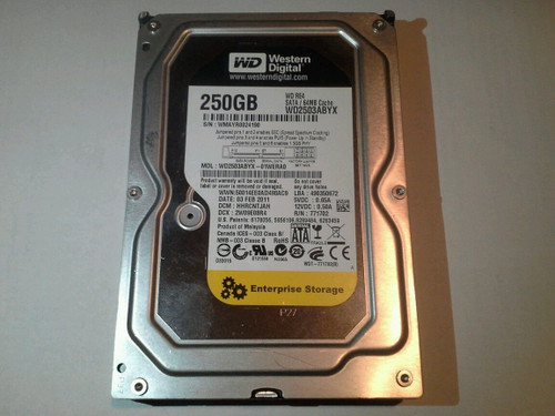 Western Digital 750GB Hot-Plug SATA 1.5GB/s Hard Drive 7200 RPM 3.5-inch form factor 1.0 inch WD2503ABYX