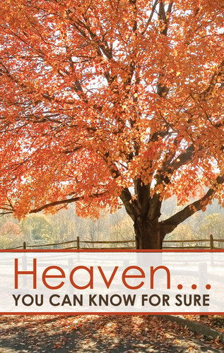 Heaven You Can Know For Sure Orange Tree
