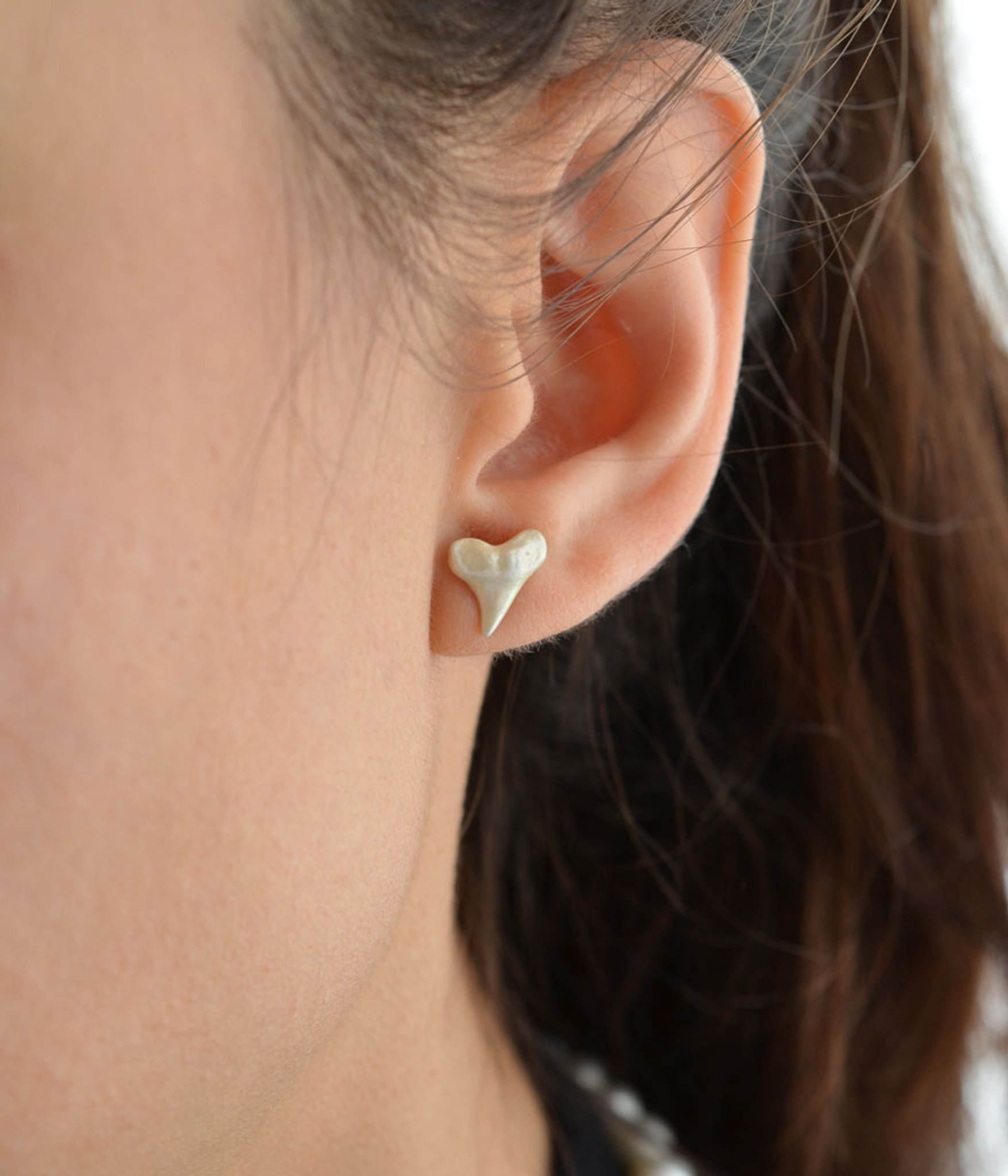Shark Teeth Earrings with 14k Gold Post (Cruelty- Free  / Solid Sterling Silver coated with White Pearl Enamel) by Jewelry Designer Nektar De Stagni.
