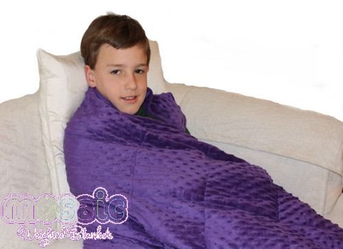 Boys Minky Weighted Blanket