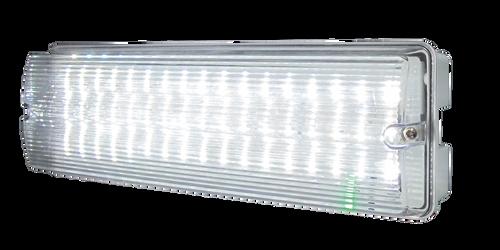 230V IP65 6W LED Emergency Bulkhead