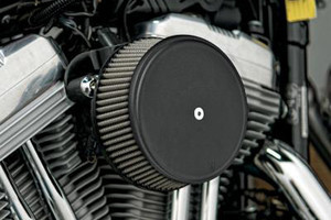 Arlen Ness   Big Sucker Stage 1 Performance Air Filter Kits with Cover for '99-06 Twin Cam Carb and '01-Up Twin Cam Delphi EFI Models (ex. '08-11 FLHT,FLHTR,FLHX,FLTR & H-D Trikes) -Black, Standard Filter