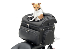 Saddlemen Pet Voyager Convertible Pet Carrier & Cargo Bag
