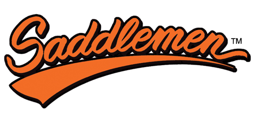 Saddlemen Saddlebag Packages