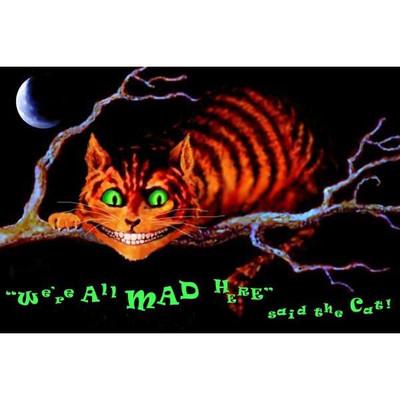 Mad Cat Black Light Poster