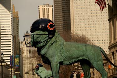 Team Progress Report: Bears