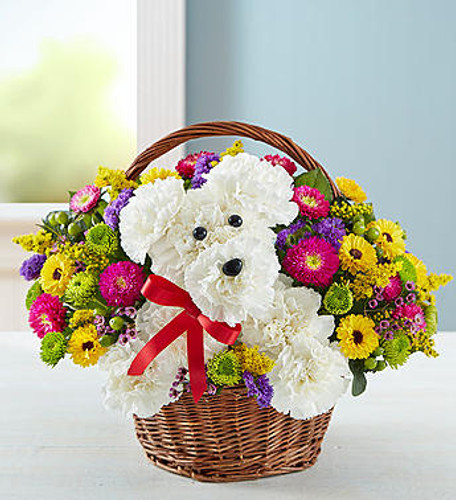 a-DOG-able® in a Basket EXCLUSIVE Unleash the smiles with our original a-DOG-able® arrangement! Hand-designed inside a reusable handled basket, this customer favorite floral creation makes a great gift for pet lovers or anyone who could use a little puppy love in their life.
