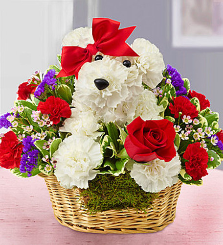 Love Pup™ EXCLUSIVE Give them a case of puppy love with our very own Love Pup. Crafted from bright white carnations, our canine cutie arrives in a charming dog bed basket, holding a single red rose. Whether you're looking to spark a romance or surprise friends, our adorable a-DOG-able® is sure to get tails wagging!