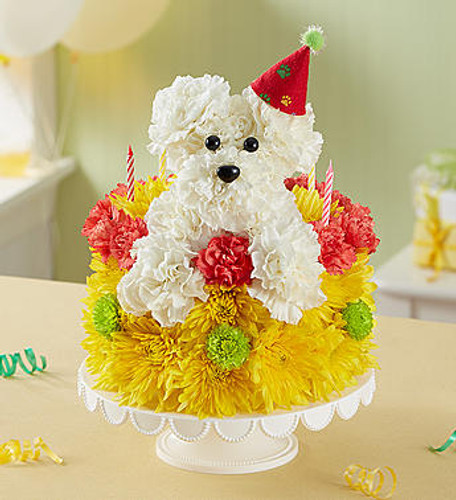 Birthday Wishes Flower Cake™ Pupcake™ EXCLUSIVE Celebrate a loyal friend on their birthday with our unique and whimsical Pupcake™! Crafted of white carnations and topped with a festive party hat, our adorable pup pops out from our cake of fresh vibrant blooms. Served up on a pedestal stand and accented with candles, it's an unforgettable way to bring fun to their celebration.