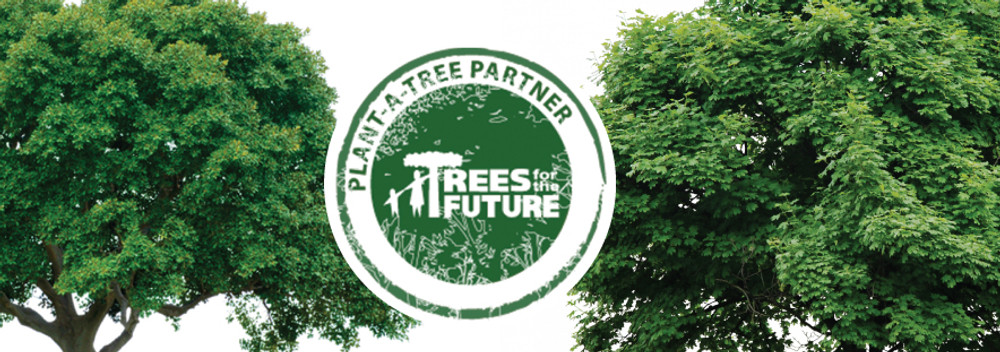 Planting Over 26,000 Trees in 2013