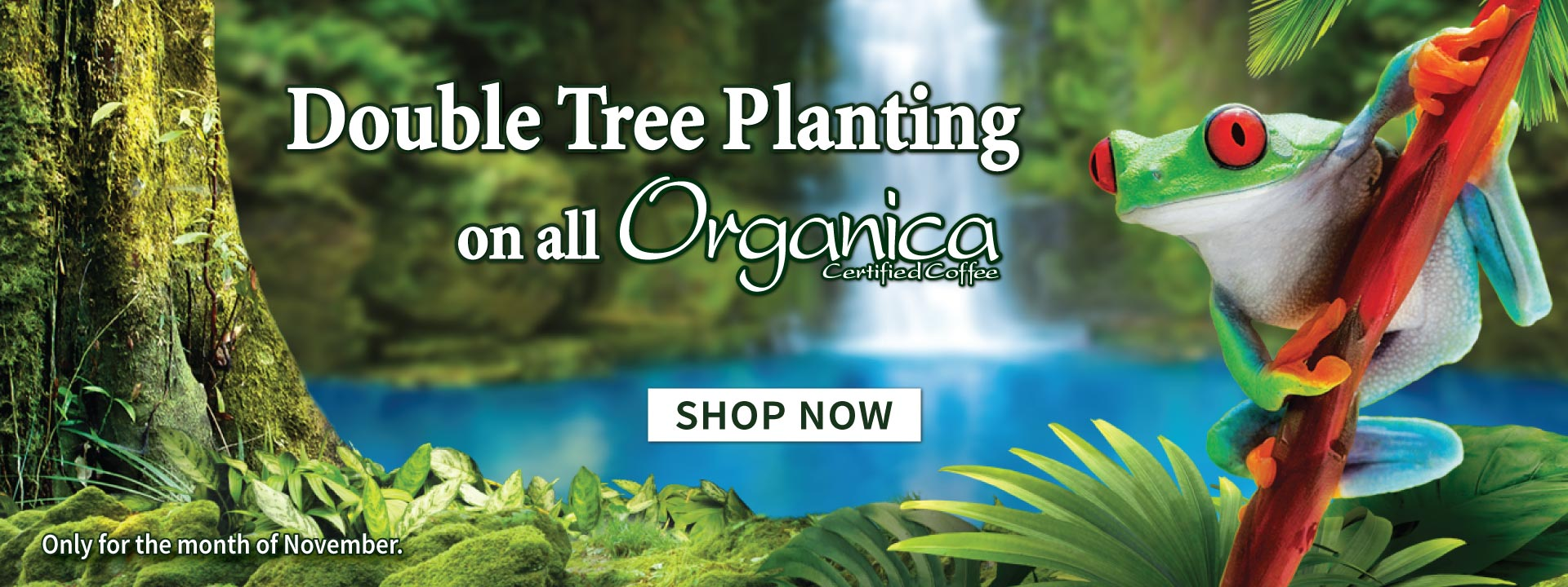 double tree planting