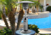 "TFPS Patio Heaters 39"" Tall Table Top - Stainless Steel Patio Heater - TFPS-HLDS032-B"